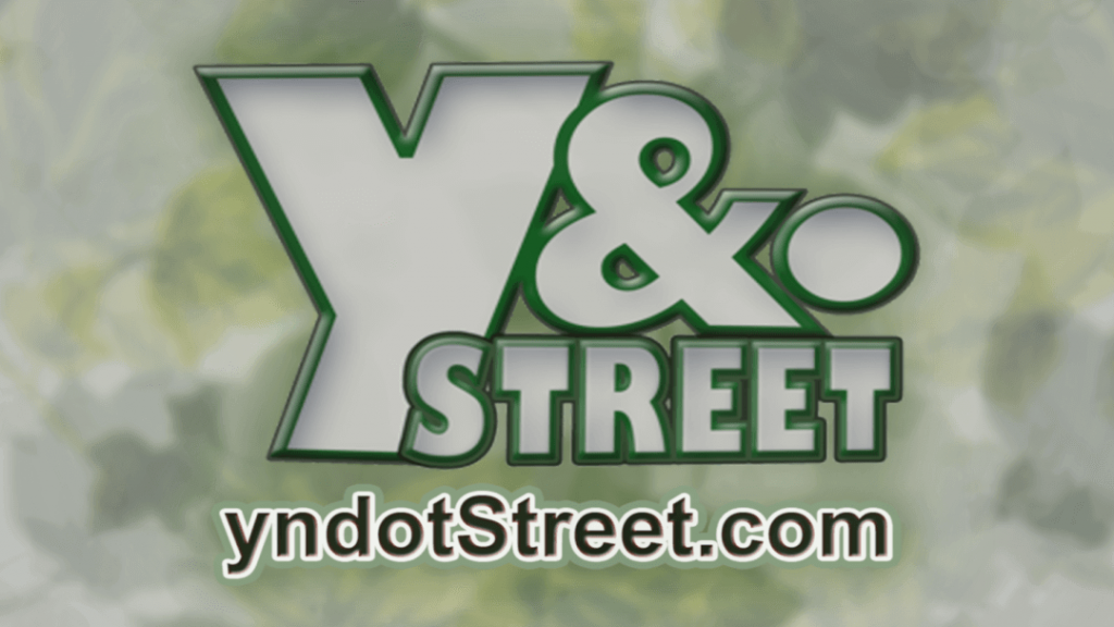 TEXT OVER IMAGE: Y&.STREET yndotStreet.com