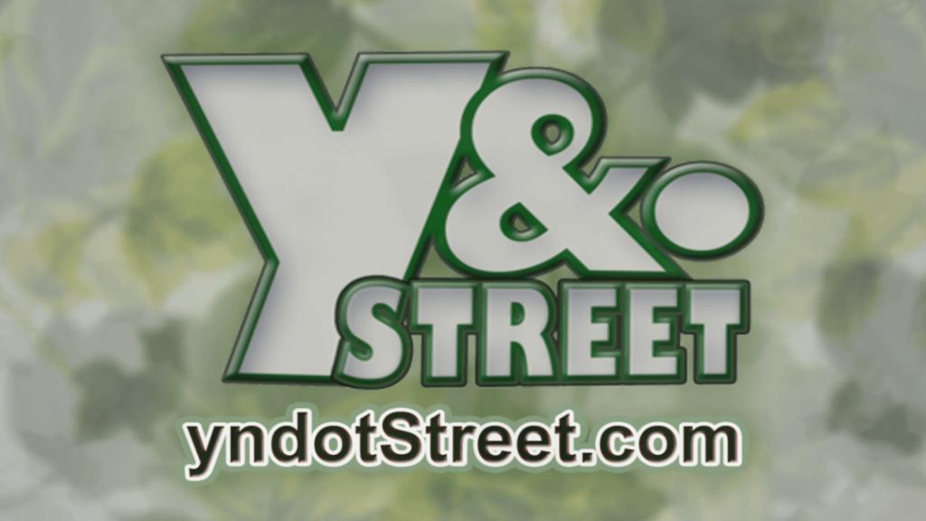 Wyndotte Street Logo Green (www.yndotStreet.com)